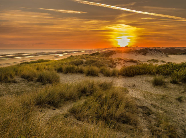Early Morning Beach Beauty In Nature Cloud - Sky Dunescape Early Bird Gets The Shot Early Morning Sky Grass Growth Horizon Over Water Landscape Marram Grass Morning Beach Nature No People Outdoors Sand Dune Scenics Sky Sunrise Tranquil Scene Tranquility Water