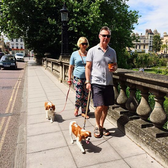 Bath North Parade Couple Dogs Street Streetphotography Sidewalk Walking The Dogs Twins Cavalier King Charles Spaniel
