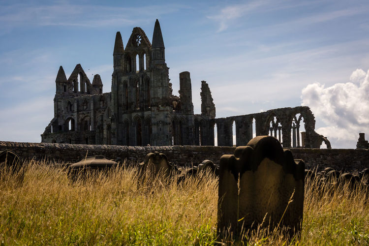 Abbey Abbey Ruins Ruins Whitby Abbey Architecture Building Exterior Built Structure Cloud - Sky Day Grass Grave Yard Gravestone History Mammal Nature No People Outdoors Place Of Worship Sky Spirituality Travel Destinations