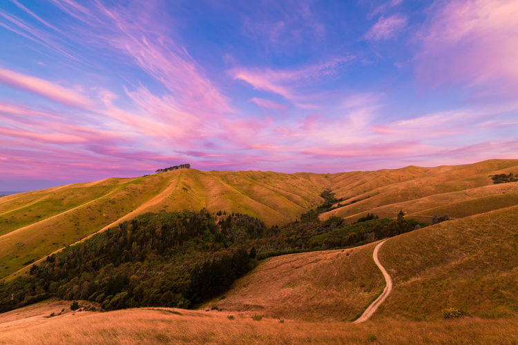 Beautiful sunset over the Wither Hills Farm Park Hills Nature Travel Beauty In Nature Clouds Colorful Day Dusk Forest Landscape Nature New Zealand No People Outdoors Scenics Sky Summer Sunset Tranquil Scene Tranquility Travel Destinations Warm Colors Woods