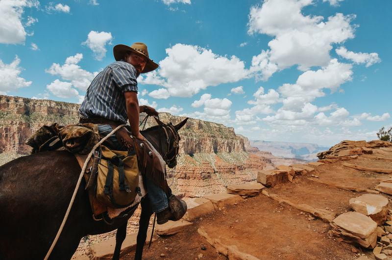 Man riding horse cart against sky