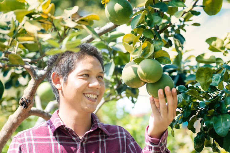 Portrait of Asian farmer smiling in corn field, Thailand Thai Agricultural Agriculture ASIA Asian  Citrus  Farm Farmer Farming Field Fruit Garden Gardener Hanging Happy Harvest Harvesting Holding Man Orchard Organic Outdoor People person Picking Pomelo Portrait Product Smile Smiling Tree Tropical One Person Growth Plant Front View Happiness Day Lifestyles