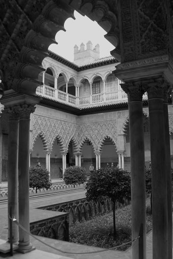 Sevilla Sevilla, España Seville Architecture Arabic Style Architectural Detail Arch Architectural Column Travel Travel Photography EyeEm Best Shots - Architecture The Architect - 2016 EyeEm Awards Black And White Blackandwhite Photography Black And White Photography Realesalcazares Your Design Story Fine Art Photography