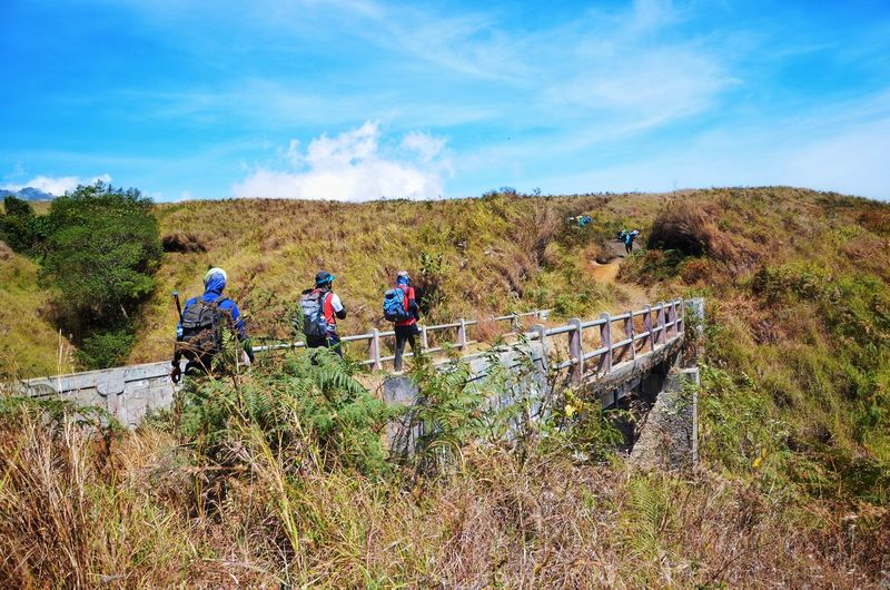 MOUNT RINJANI, LOMBOK INDONESIA. SEPT 16th 2017- Unidentified hikers start their journey to hike Mount Rinjani from sembalun route. Wallpaper Background ASIA Mount Rinjani INDONESIA Hiking Hikingadventures Sembalun Route Working Men Tree Agriculture Occupation Sky Hiking Pole Trail Hiker Backpack Explorer