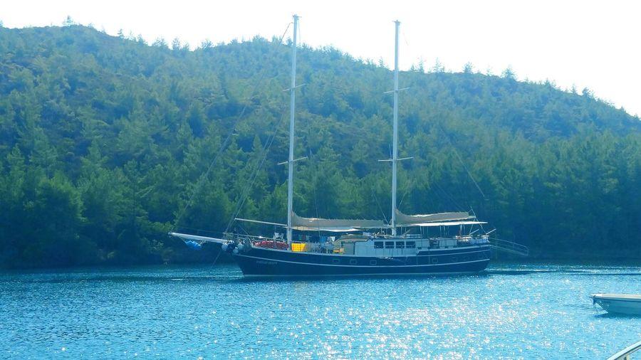 Seaside Yacht Life Taking Photos Sailboat