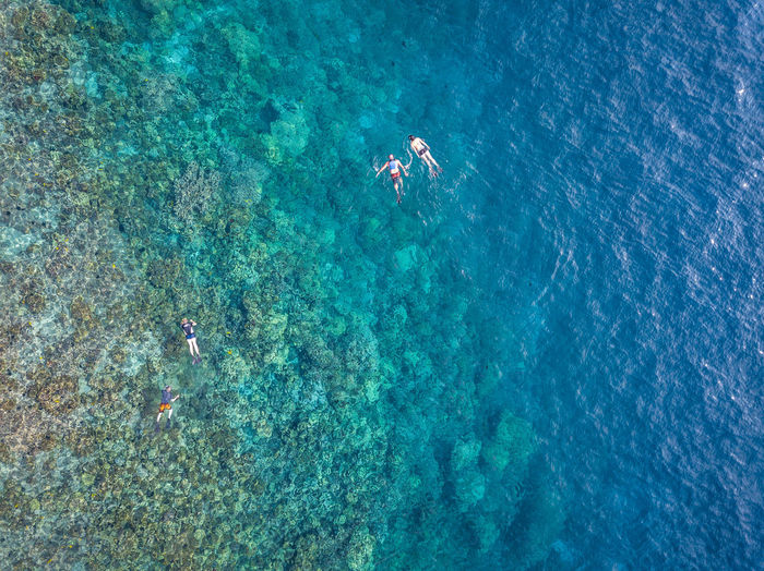 Adventure Aerial View Aquatic Sport Beauty In Nature Drone  Eyesight Full Length High Angle View Leisure Activity Nature Outdoors Paddleboarding Real People Rowing Scuba Diving Sea Summer Swimming Travel Destinations Two People UnderSea Underwater Vacations Water Weekend Activities