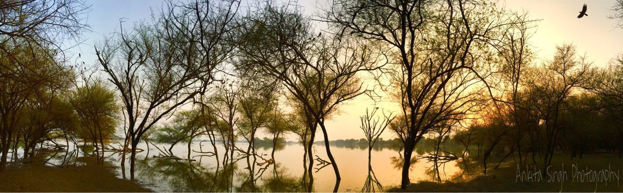 Nature Photography India Travelphotography Travel Photography Indiapictures Gujrat Tholbirdsanctuary Thol Reflections In The Water Reflection