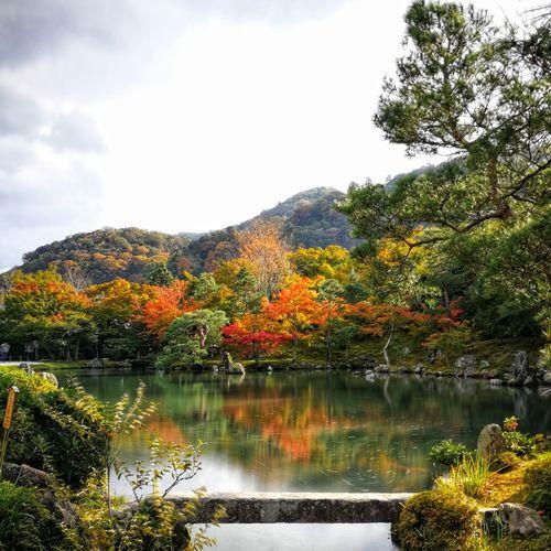 Garden Outdoors Japan Landscape No People Lagoon