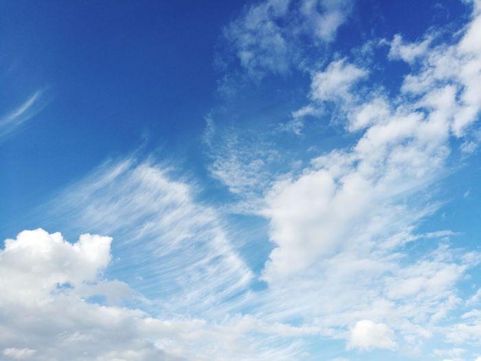 Birdie Cloud - Sky