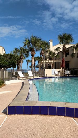 Swimming Pool Palm Tree Pool Architecture Sky Building Exterior Outdoors Sunlight Poolside