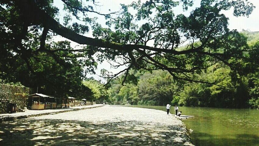 河边 Tree Water Full Length Men Road Sky