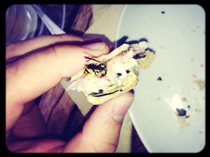 Breakfast Wasp