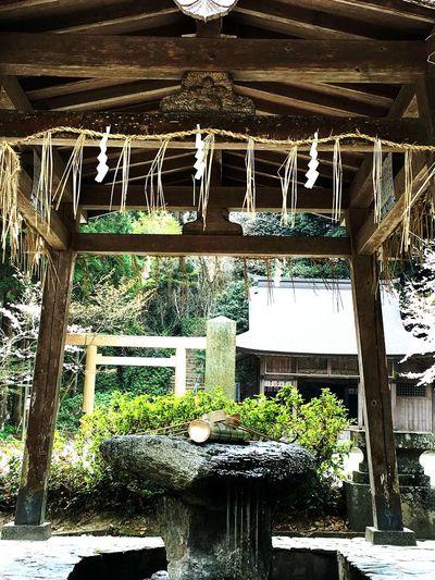 桜井神社 手水舎 福岡県 糸島市 Shrine Shrine Of Japan Japan Photography Japanese Shrine Sakurai Shrine in Itoshima City Fukuoka,Japan