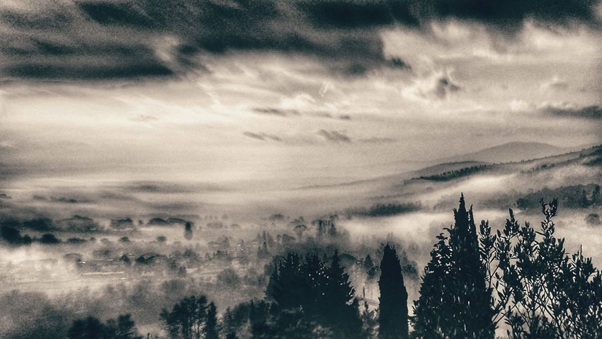Foggy Morning Nature Beauty In Nature Cloud - Sky Scenics No People Sky Tranquil Scene Tranquility Day Outdoors Tree Rural Scene Autumn Black And White Foggy Fog Black And White Friday Shades Of Winter