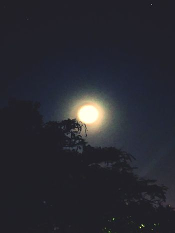 Beauty In Nature Moon Scenics Nature Low Angle View Sky