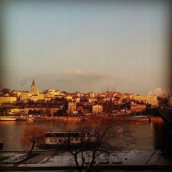 Belgrade Likeadream