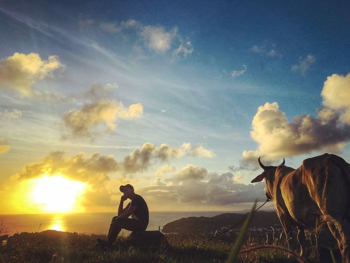 Me, the Sun and a Cow Sky Cloud - Sky Domestic Animals Sunset Mammal Nature Scenics Togetherness Beauty In Nature Landscape Outdoors Camera - Photographic Equipment Smartphonephotography Travel Destinations Travel Lifestyles Adventure Traveling Beauty In Nature