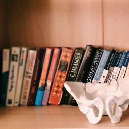 Books Pelvis