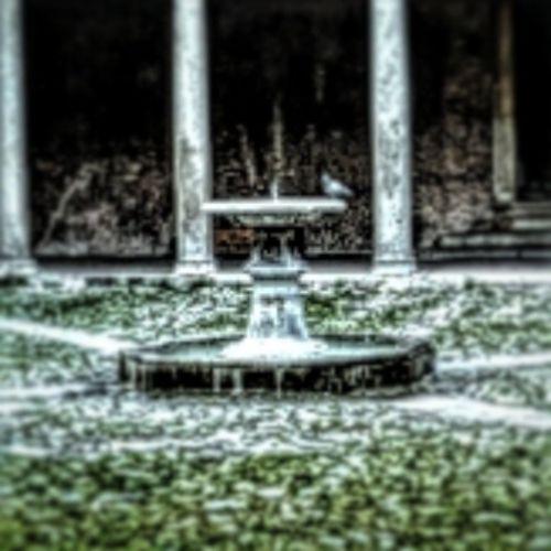 Made with Pixlr Autocorrect Autocontrast Mik Rome Statue Arte Art Pigeon Fountain Sajatkep Myphoto Iconsquare View Ig_photo_lige Iponthu Ikozosseg VSCO Vscohungary Instaroma SPQR Church Temple Igersroma Shot all_shot