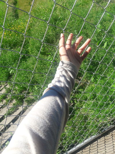 Grass Green Color Human Body Part Day High Angle View Human Hand Nature One Person Outdoors Low Section People Adult One Man Only Close-up Adults Only Only Men