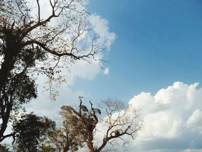 Sky Nature_collection Popular Photos