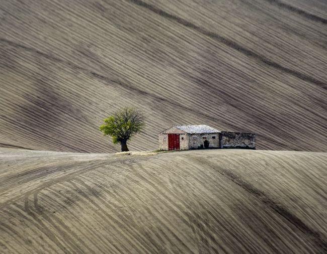 La casa di