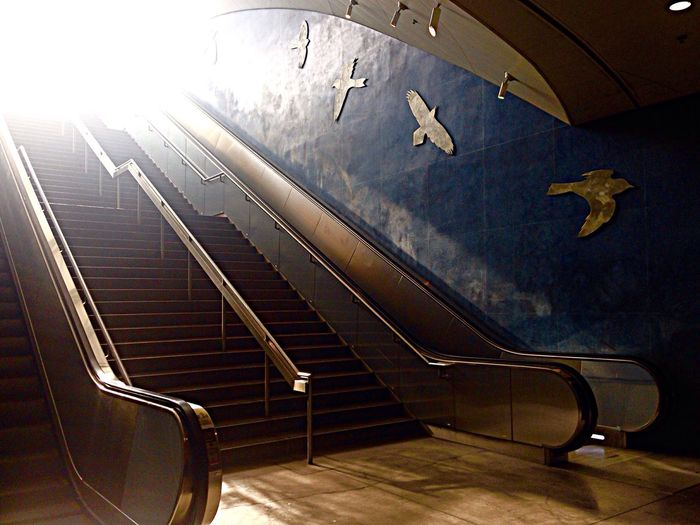LA Subway Station Soto St Lametro Escalator Bird Paintings Beautiful Light Architecture The Week On EyeEm