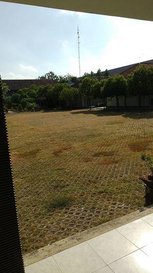 Footpath in lawn against sky