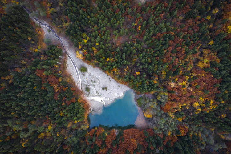Beautiful small turquoise lake found in a forest near my town. Autumn Water Beauty In Nature Nature Tree No People Plant Change Land Scenics - Nature Day Forest Environment Outdoors Non-urban Scene Flowing Water Flowing Emerald Turquoise Turquoise Water Aerial View Aerial Aerial Photography Lake Autumn