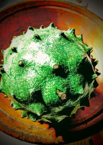 Graviola Cactus Cactus High Angle View Power In Nature Eyeem Market Power Fruit Green Fruit Close-up Green Color