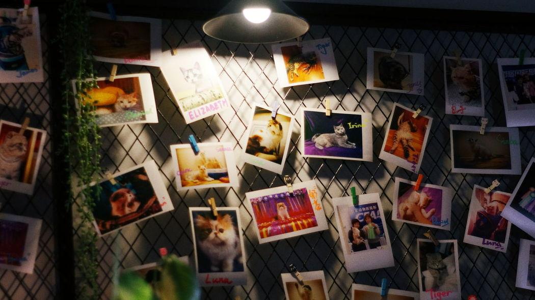 2016.05.24 일상 산책 카페 인테리어 사진 포토 포토그라피 스냅 스냅사진 Walk Cafe Interior Pic Photo Photography Snap Sony Sony Nex6 Minolta MD Minolta Md W.rokkor-x 28mm F2.8