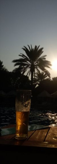Liqueur Water Tree Alcohol Drink Beach Drinking Glass Sunset Cocktail Cold Temperature