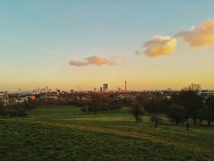 London from Primrose Hill Sunset Sky Nature Landscape City No People Dramatic Sky Cloud - Sky Sun Tree Outdoors Scenics Beauty In Nature Day Primrose Hill London Primrose Hill London Architecture