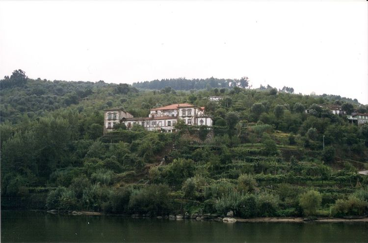 Sailing the Douro River Architecture Building Exterior Built Structure Clear Sky Day Douro  Douroriver House Landscape Nature No People Outdoors River River View Riverside Sky Tree Water