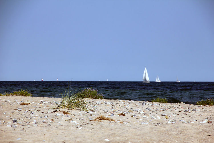 Baltic Sea Denmark Beach Beauty In Nature Clear Sky Copy Space Day Horizon Horizon Over Water Land Nature Nautical Vessel No People Sailboat Scenics - Nature Sea Sky Summer Tranquil Scene Tranquility Transportation Water Yacht