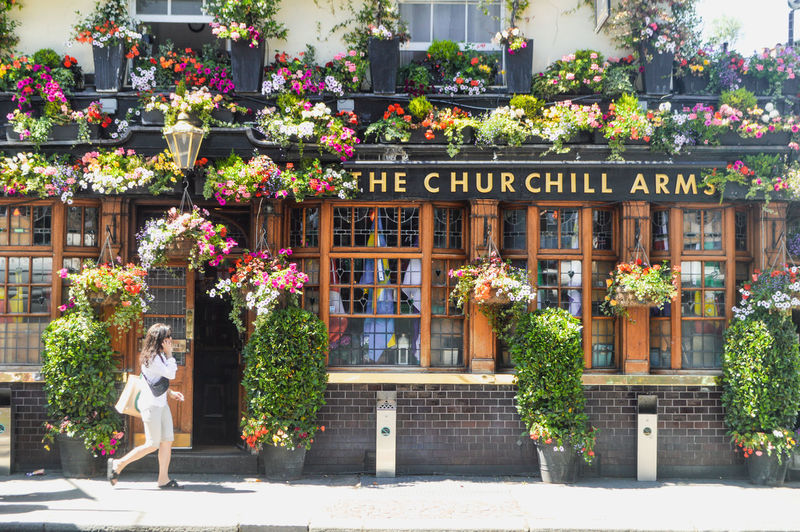Let nature be your religion London Notting Hill Pub The Churchill Arms Architecture Beauty In Nature Building Building Exterior Built Structure City Day Flower Flower Pot Flowering Plant Flowers Freshness Growth Nature No People Outdoors Plant Real People Retail Display Sunlight Window