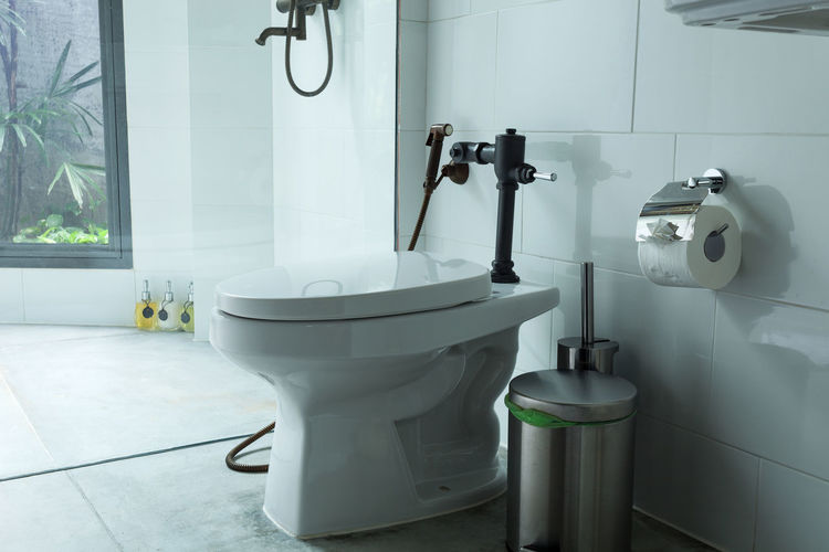 Absence Bathroom Day Domestic Bathroom Domestic Room Faucet Flooring Home Home Interior Household Equipment Hygiene Indoors  Luxury Modern No People Sink Tile Tiled Floor Toilet White Color