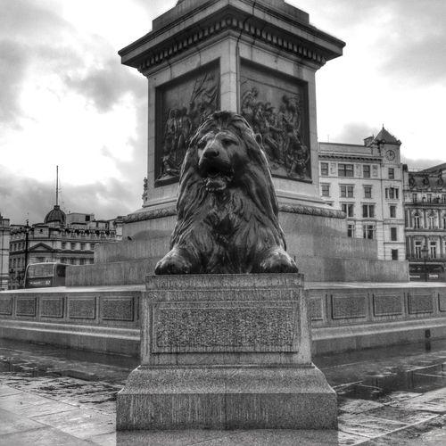 Blackandwhite London Traveling Snapseed