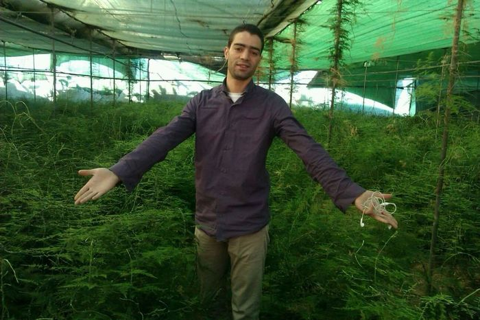 Green Green Green!  Welcome To The Jungle Lol ^.^ Azemour Morocco