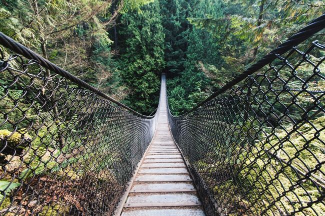 Suspended Nature Bridge Explorevancouver Seeing The Sights