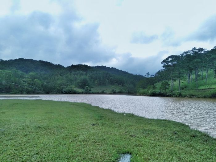 Da Lat, Viet Nam Nokia5 Morning Light Landscape Skyline Road Byphone Travel Shadowdog Shadow Mobilephotography Roadtrip Vietnam Country Water Tree Mountain Sky Grass Green Color Cloud - Sky Farmland Agricultural Field Cultivated Land Countryside Plowed Field Lakeside Plantation