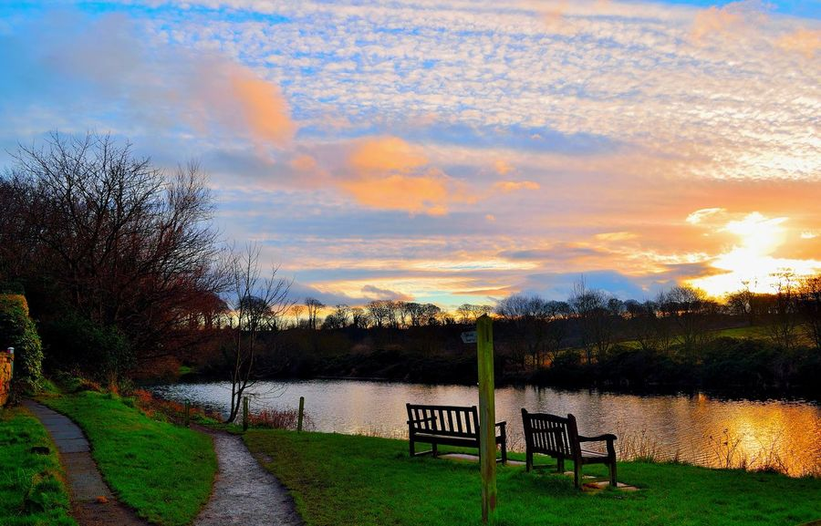 Breathing Space Colours The Week Of Eyeem The Week On Eyem Bare Tree Beauty In Nature Cloud - Sky Day Dusk Grass Growth Lake Landscape Nature No People Outdoors Scenics Sky Sunset Tranquil Scene Tranquility Tree Water