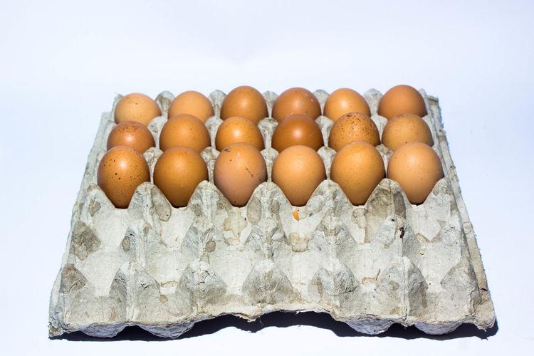 Egg Food Food
