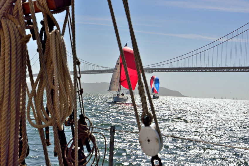 Sailing Past The Golden Gate Bridge 3 San Francisco CA🇺🇸 Aboard The Alma Scow Schooner Alma's Rigging Sailing San Francisco Bay The Color Of Sport Sailboats Open Sails Golden Gate Bridge Architecture Bridge Span Silhouettes Marin Headlands View From The Deck Seascape Landscape_Collection Landscape_photography Nautical Vessels Rope A Day On The Bay Water Suspension Bridge Horizon Over Water