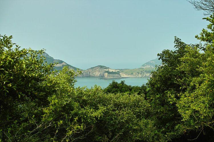굴업도 Island Island Travel Mountain Range Sea Landscape Korea