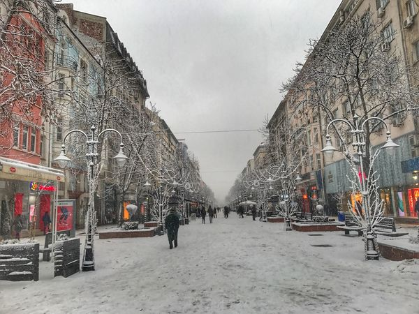 Sofia Sofia Bulgaria Vitosha Street Town City Winter Architecture Built Structure Weather Snow Cold Temperature Transportation Building Exterior Tree Outdoors Mode Of Transport Real People Day Land Vehicle Sky City Bare Tree Road Nature Large Group Of People