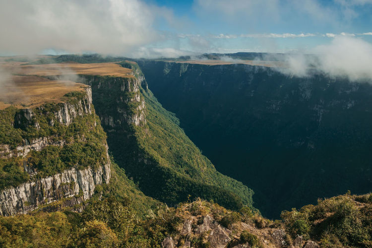 Fortaleza canyon with steep rocky cliffs covered by forest near cambará do sul. brazil.