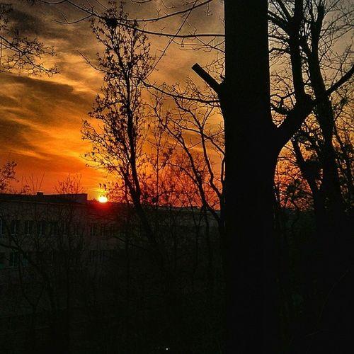Sunset.Lviv. Liketolike Like4like Followme Sunset sunrise sun TFLers pretty beautiful red orange pink sky skyporn cloudporn nature horizon photooftheday instagood gorgeous warm view nightinstasky