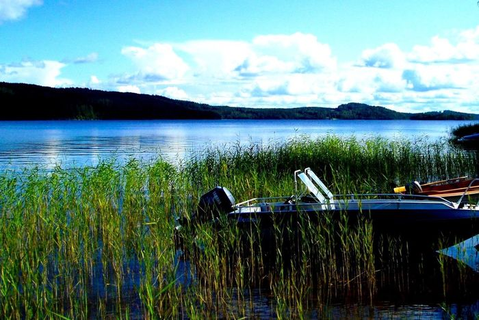 Landscapes With WhiteWall Naturephotography Sweden-landscape Colorphotography Natur pur First Eyeem Photo Nature_collection