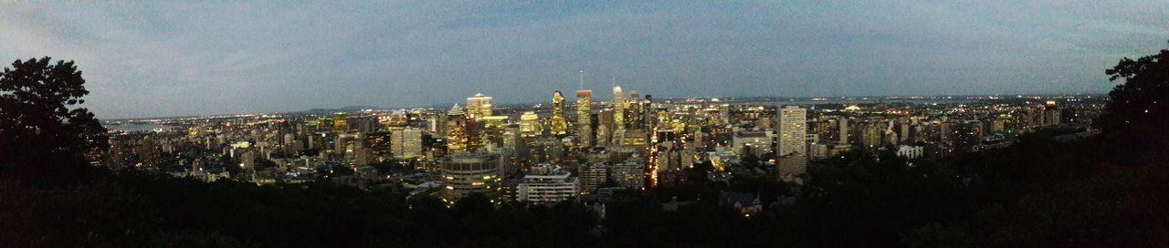 City Cityscape Skyscraper Illuminated Urban Skyline Tree Business Finance And Industry Sky Architecture Urban Scene Be Brave